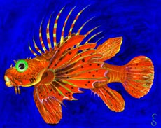 Tropical Fish 7