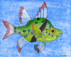 Tropical Fish 8